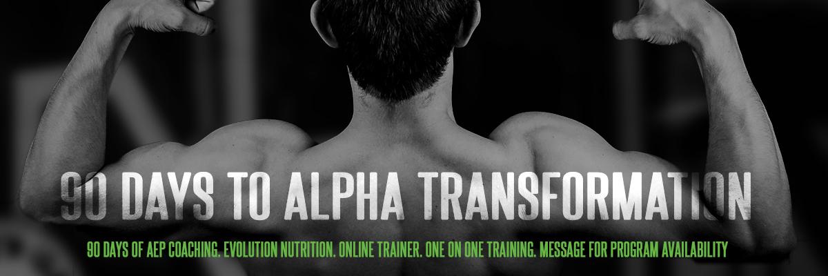90 DAYS TO ALPHA TRANSFORMATION